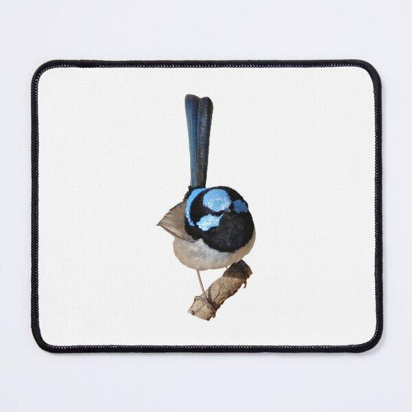 Superb Fairy-wren male Mouse Pad