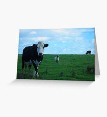 Kühe und ein Schaf Greeting Card