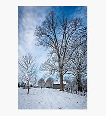 Frosty Blue Photographic Print