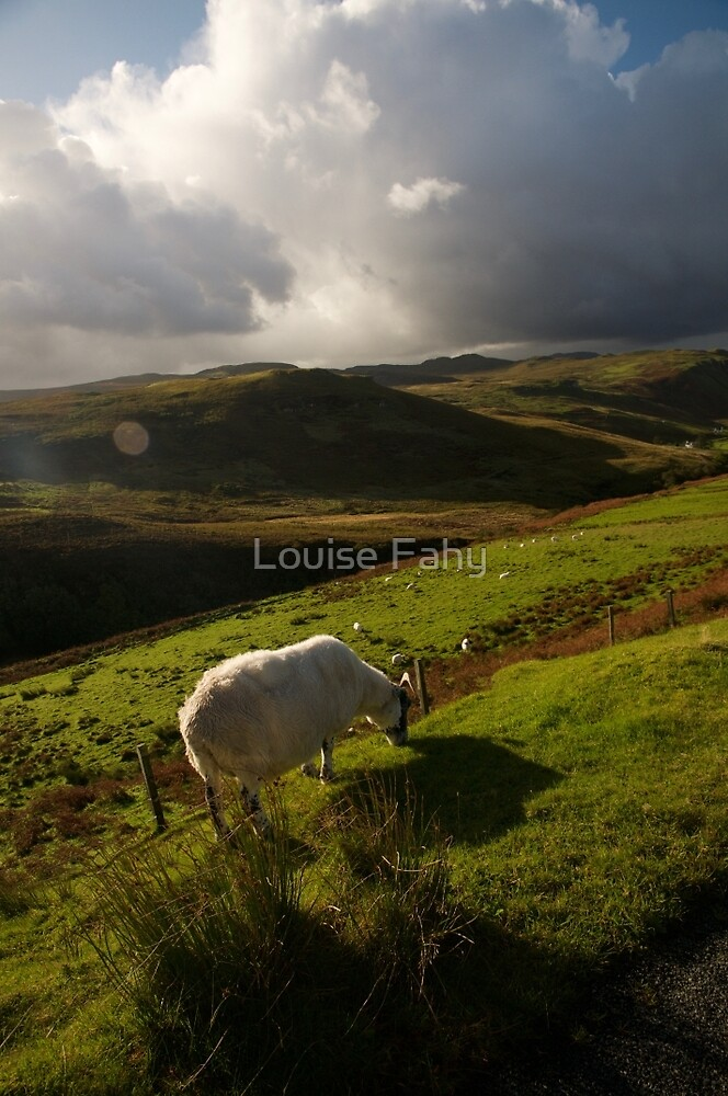 Scottish Highlands by Louise Fahy