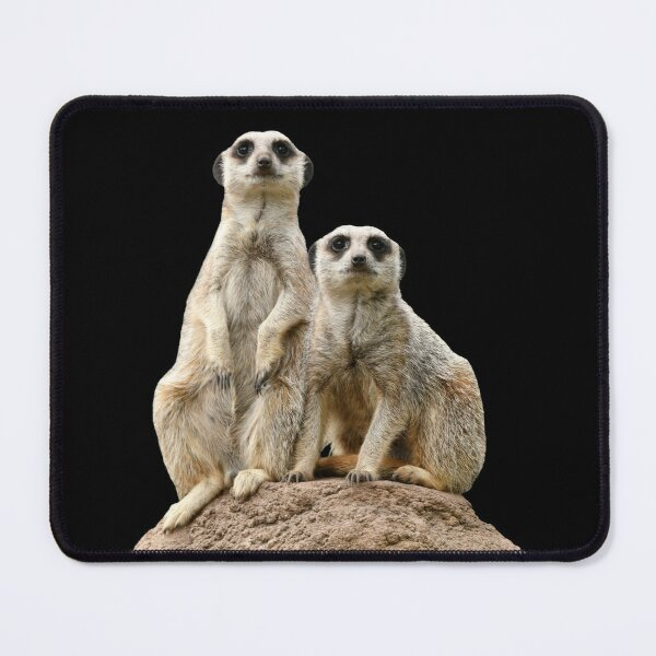 Meerkats 4 Mouse Pad
