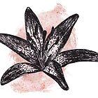 Little Lily by Lorna Boyer