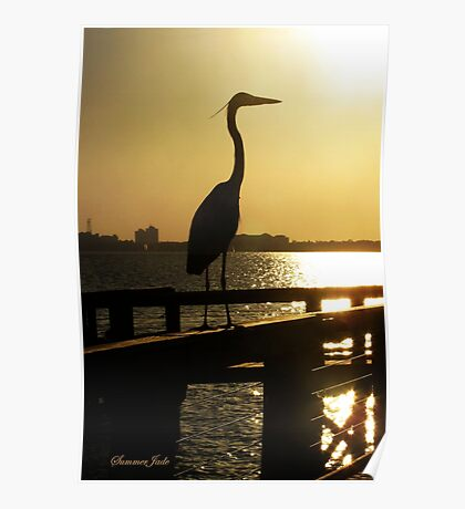 The Heron ~ Sundown Silhouette Poster