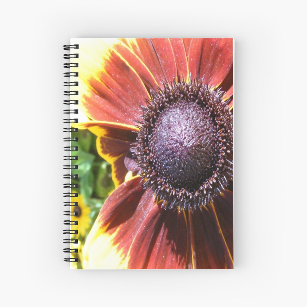 RED SUNFLOWER SEEDS AND PETALS Spiral Notebook