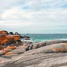 Cosy Corner - Bay of Fires - Tasmania by Anthony Davey