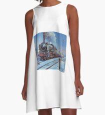 Rhinegold express. A-Line Dress