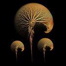 dandelion fractal by JBJart
