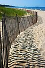 Beach Fence Shadows, Lake Michigan by John Carpenter