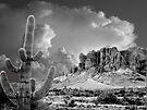Desert Grandeur by John Carpenter
