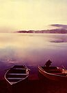 Awakening at the Lake by John Carpenter