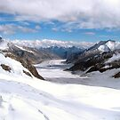 Great Aletsch Glacier by Philipp Verges