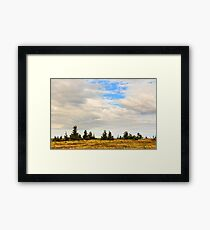 high wild plants at the mountain top Framed Print