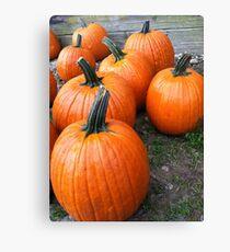 Perfect Pumpkins Canvas Print