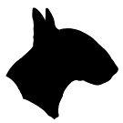 Bull Terrier!!! by stellarmule