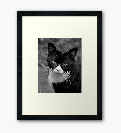 Trapper #1 Framed Print