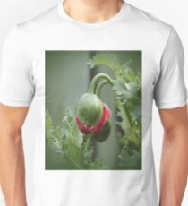 Poppy Bud  T-Shirt