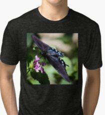 Spicebush Swallowtail Papilio Troilus Tri-blend T-Shirt