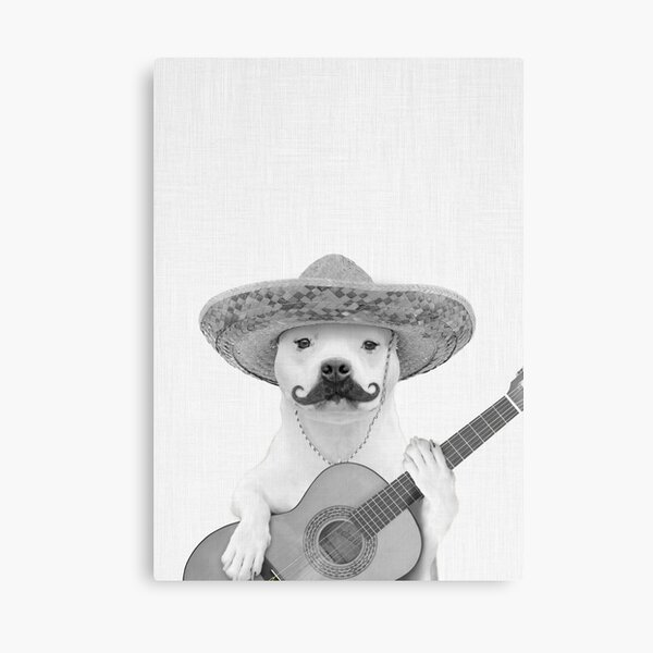 Dog Spanish Guitarist Canvas Print