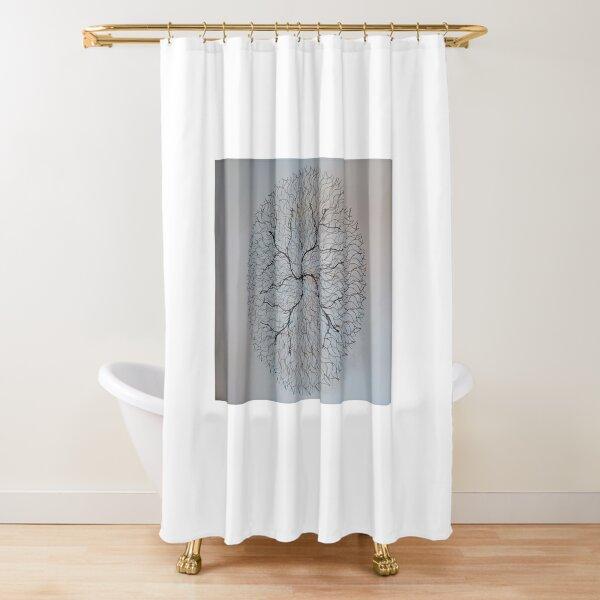 Art  Shower Curtain