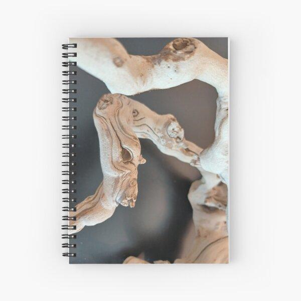 Dry Art  Spiral Notebook