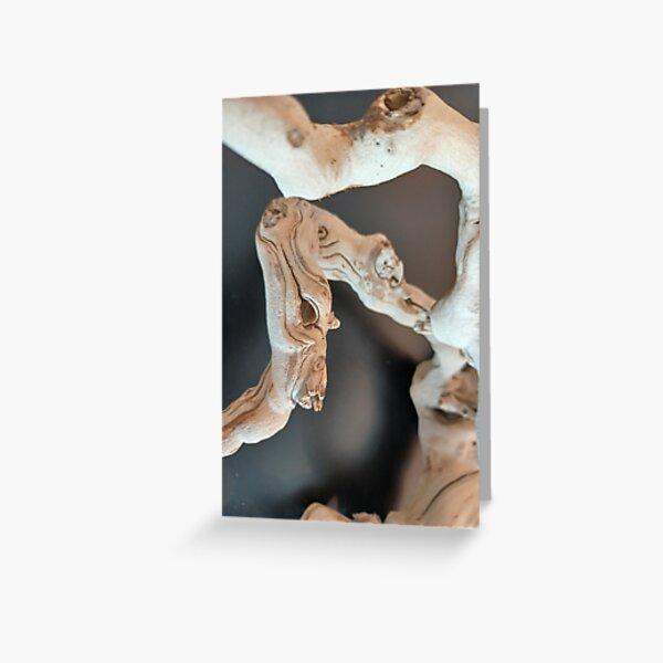 Dry Art  Greeting Card