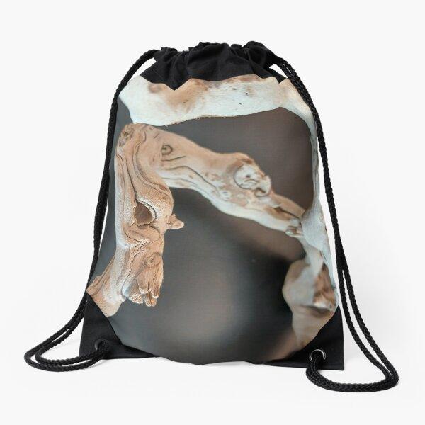 Dry Art  Drawstring Bag