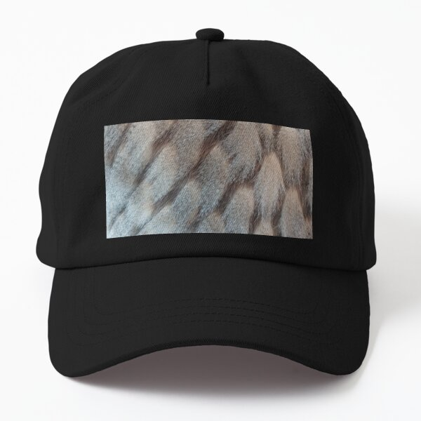 Hide Art  Dad Hat