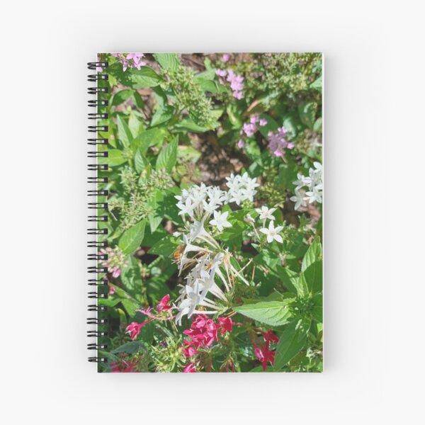 Butterfly Bush Plant Art  Spiral Notebook