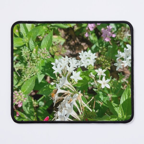Butterfly Bush Plant Art  Mouse Pad