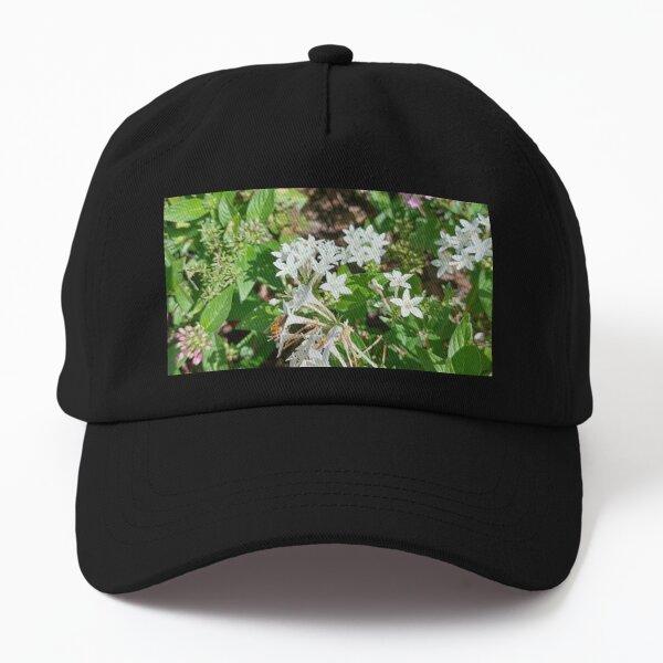 Butterfly Bush Plant Art  Dad Hat