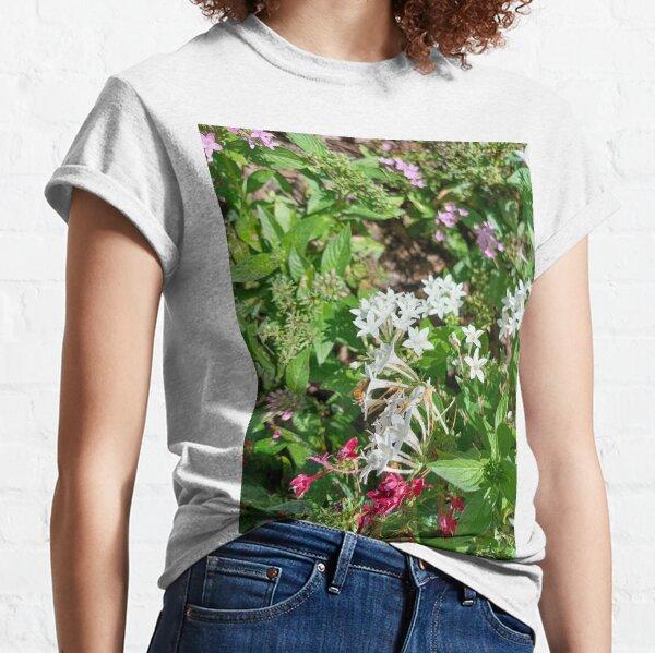 Butterfly Bush Plant Art  Classic T-Shirt