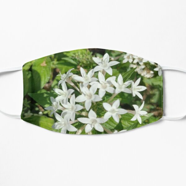 Lilies Art  Flat Mask