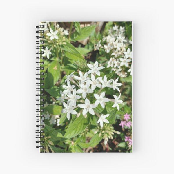 Lilies Art  Spiral Notebook