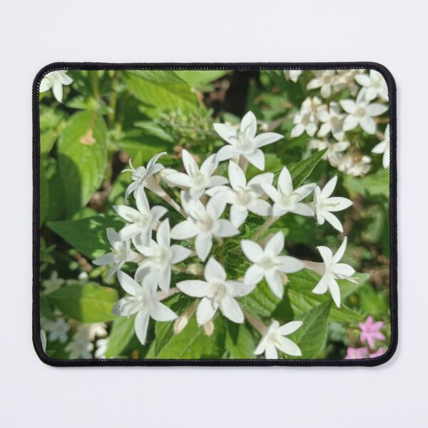 Lilies Art  Mouse Pad