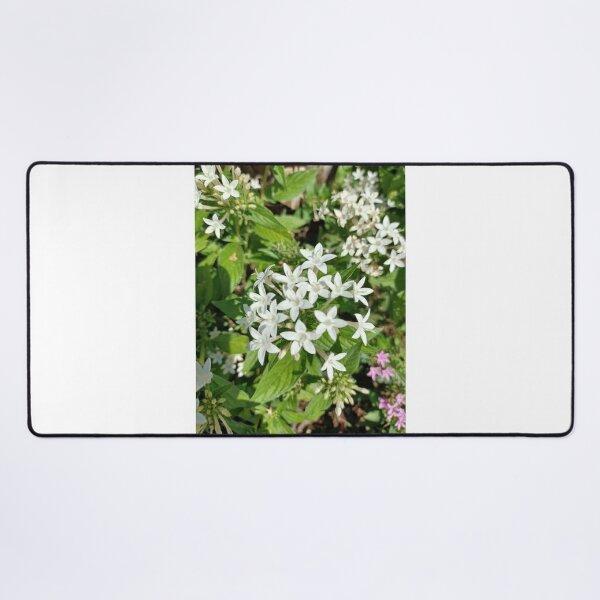 Lilies Art  Desk Mat