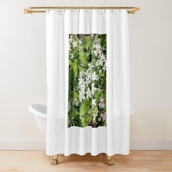 Lilies Art  Shower Curtain