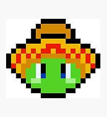 Pixel Bean Photographic Print