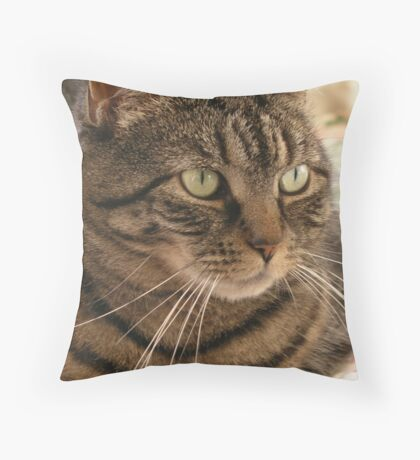 Rings around the collar Throw Pillow