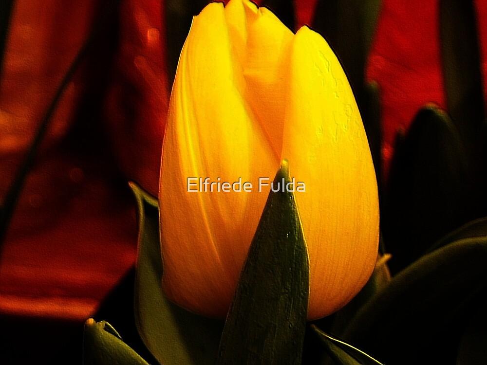 A Little Spring ! by Elfriede Fulda
