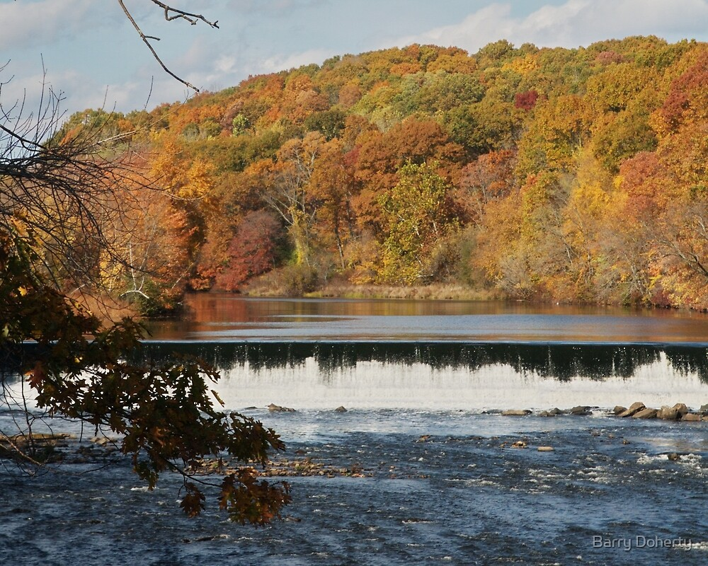 Late Autumn by Barry Doherty