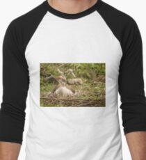 91916 goose goose Men's Baseball ¾ T-Shirt