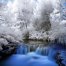 Kerosine creek in infrared 2 by Paul Mercer
