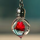 Message In A Bottle by Suvi  Mahonen