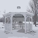 Snowy Gazebo by Collin Scott