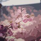 Pink Flower by Collin Scott