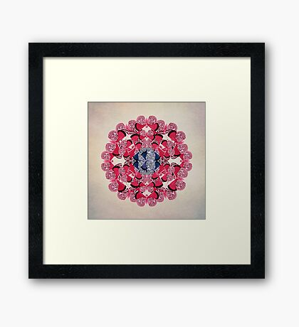 Butterfly Dance Framed Print