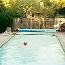 Pool Angel by Kelly Nicolaisen