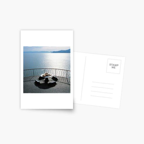 Round Table Postcard