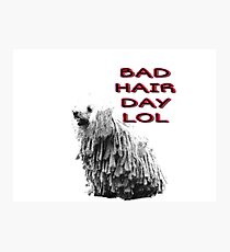 Bad hair day Photographic Print