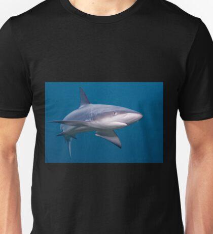 Galapagos Shark T-Shirt
